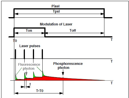 Applications Of Fluorescence And Phosphorescence